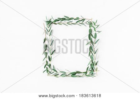 Eucalyptus on white background. Frame made of eucalyptus branches. Flat lay top view