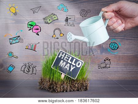 Hello May concept. Fresh and green grass on wood background.