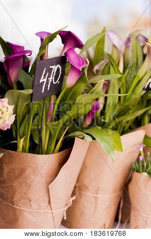 Purple callas wrapped in kraft paper for sale