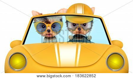 Couple of puppies sitting in the yellow cabriolet, isolated on white background. Vacation and travel concept concept. Realistic 3D illustration with clipping path
