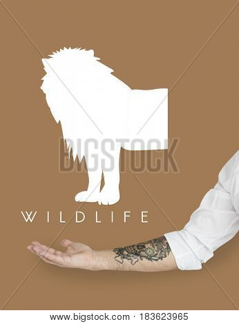 Animal Wildlife Word with Lion Graphic