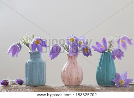 the spring flowers in vases on white background