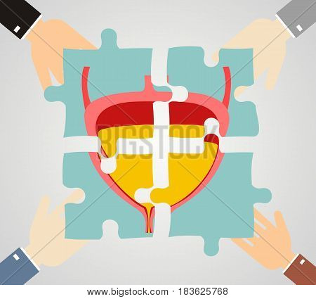 Healthcare concept. Hands hold pieces puzzle of bladder. Vector.