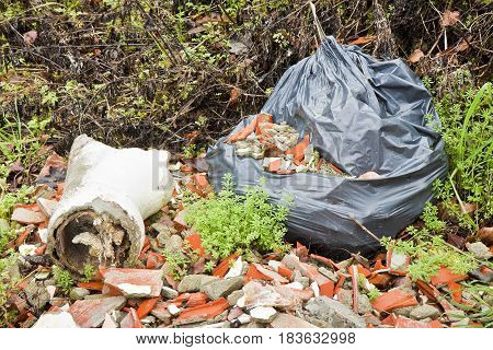 Illegal dumping in nature - concept image
