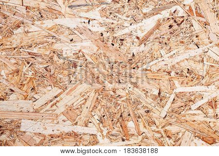 Surface of the pressed wood-shaving plate made of the remains of processing of a tree