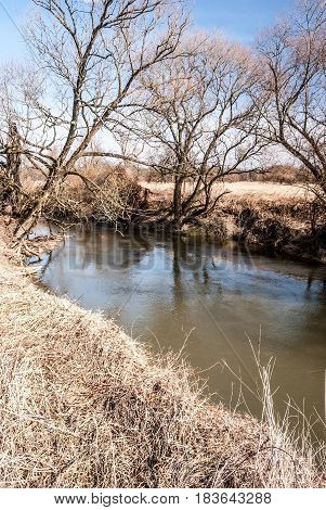 Odra river with trees and clear sky in CHKO Poodri protected area near Studenka city in Czech republic during springtime
