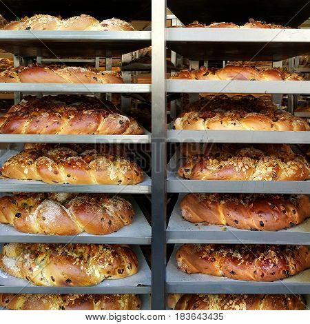 Many hot just baked Easter breads with raisins and dried fruits on the shelves in a bakery.
