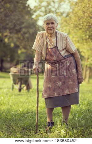 An elderly woman standing in an orchard