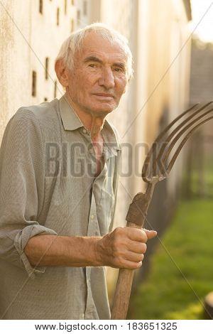 Portrait of an elderly man standing in a garden holding rakes