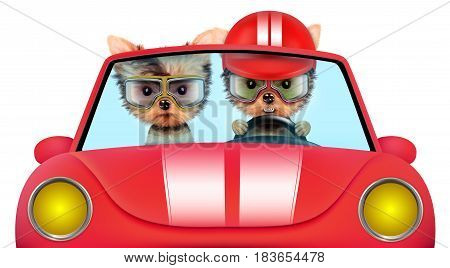 Couple of puppies sitting in the red cabriolet, isolated on white background. Vacation and travel concept concept. Realistic 3D illustration with clipping path