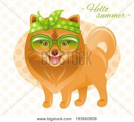 Summer fashion pomeranian spitz puppy dog in sweet retro clothes, vintage sunglasses, bow ribbon. Cartoon vector illustration isolated on white background.