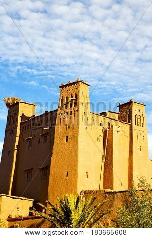Africa In Morocco   Old Contruction And  Village