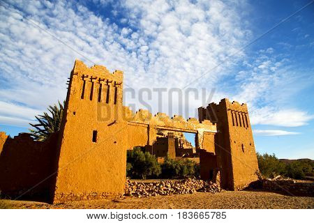 Africa In Morocco