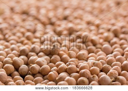 Placer Chickpeas Texture
