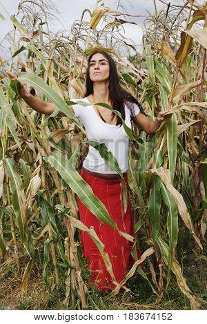 Hispanic woman standing in corn field