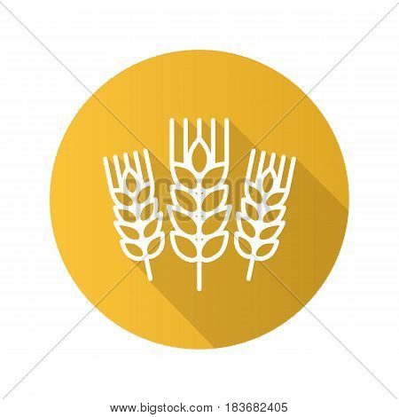 Wheat ears flat linear long shadow icon. Spikes of rye. Barley. Vector line symbol
