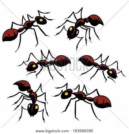 Assortment of creepy crawly ants for your picnic