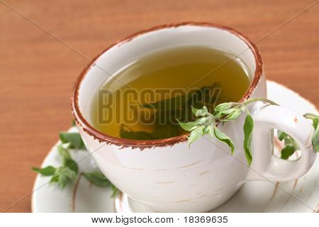 Herbal tea prepared from the Peruvian herb called Muna (lat. Minthostachys stetosa) which is used mainly for its positive digestive effects and has a mint-like taste (Selective Focus Focus on the head of the fresh plant on the rim of the cup) poster