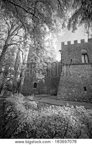 Black and white view of the old castle. The survey was conducted in the infrared range. It turned out a classic black and white photo.