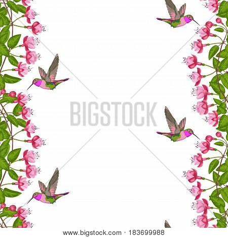 Pink fuchsia and hummingbird seamless border on white. Background for postcards, greeting cards, wedding invitations with place for text. Romantic floral wallpaper.