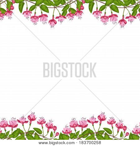 Pink fuchsia seamless double border on white background. Template for postcards, greeting cards, wedding invitations with place for text. Vintage floral wallpaper.