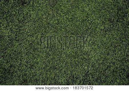 Football field green synthetic grass. Sports background,