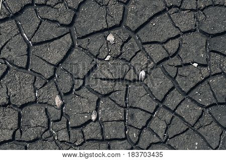 Cracked ground dry earth dry land texture background