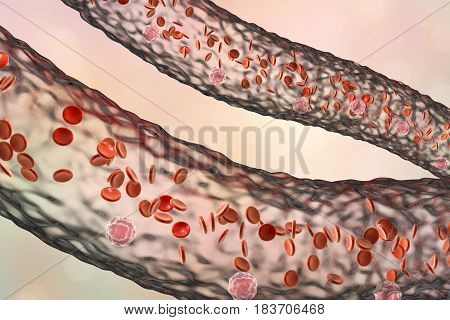 Blood vessel with flowing blood cells, side view, 3D illustration