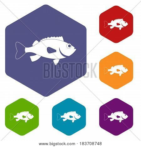 Sea bass fish icons set hexagon isolated vector illustration