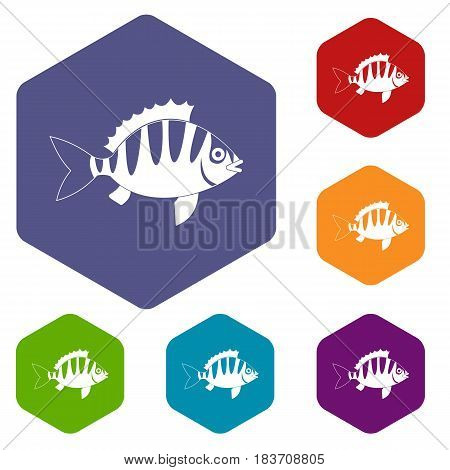 Perch icons set hexagon isolated vector illustration