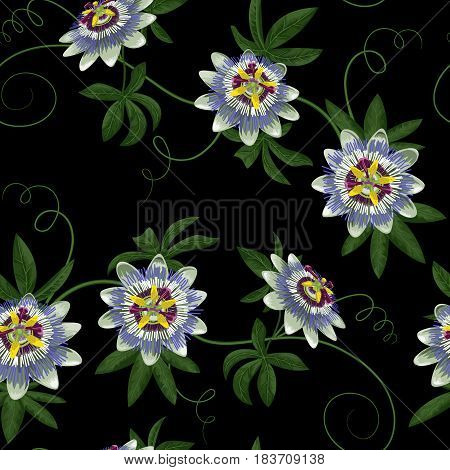 Passiflora seamless pattern. Wallpaper with exotic branch isolated on black. Background for wedding invitations, greeting cards.