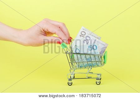 Polish Zloty In The Shopping Pushcart On Woman's Palm, Yellow Background