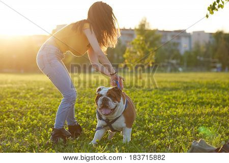 young woman Playing with  english bulldog on sunset