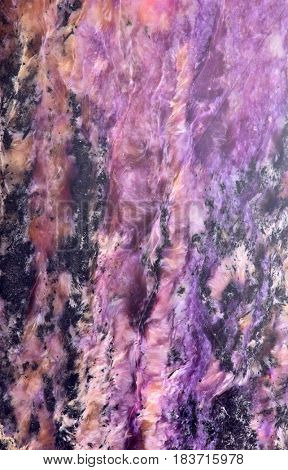 macro texture of black and lilac charoite mineral