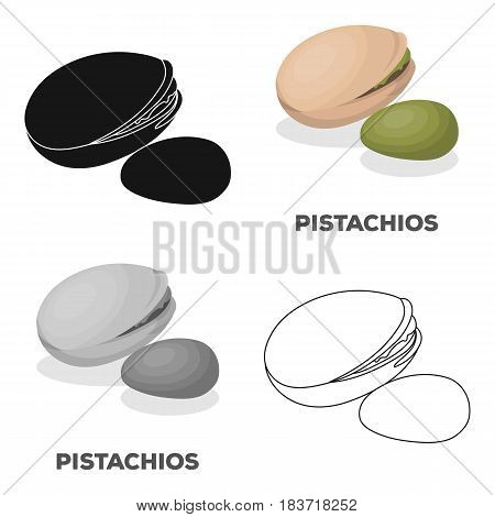 Green pistachio in the shell.Different kinds of nuts single icon in cartoon style vector symbol stock web illustration.