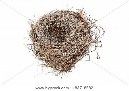 Empty Carolina Wren bird nest isolated over a white background. Image shot from above with copy space.