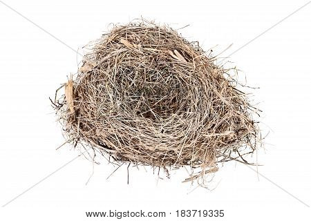 Empty Carolina Wren bird nest isolated over a white background. Copy space available.