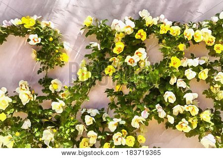 Garden roses on wall background colorful painting