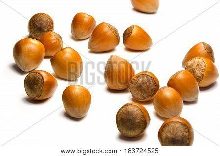 Macro of organic hazelnuts on white background