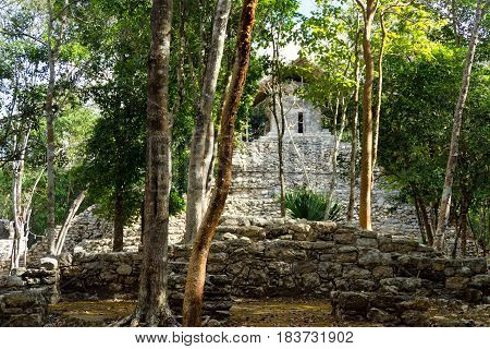 View of the Temple of the Paintings in the Mayan ruins of Coba Mexico