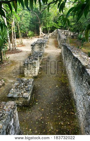 Low wall in the jungle in the Mayan ruins of Coba Mexico