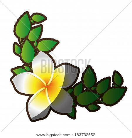 decorative frame silhouette shading of single malva flower with leaves vector illustration