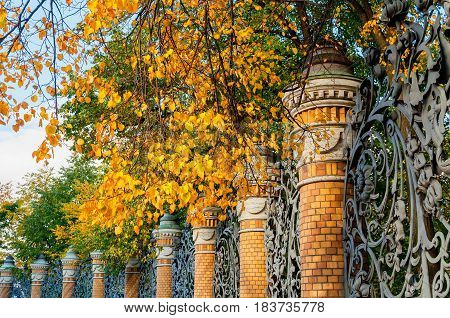 St Petersburg Russia - autumn view- fence of the Michael Garden in St Petersburg Russia in autumn sunny day. Autumn architecture view of St Petersburg landmark framed by autumn yellowed trees.