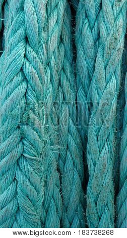 closeup thick green rope worn on the ship at Sunny summer day,