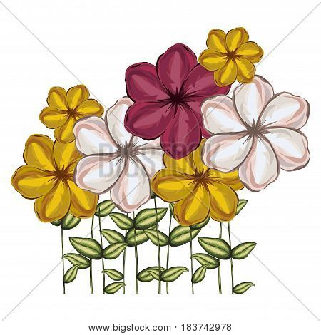 watercolor silhouette set of malva flowers with stem and leaves in colors red white and yellow vector illustration