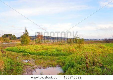 Field at summer in Leningrad Region Russia.