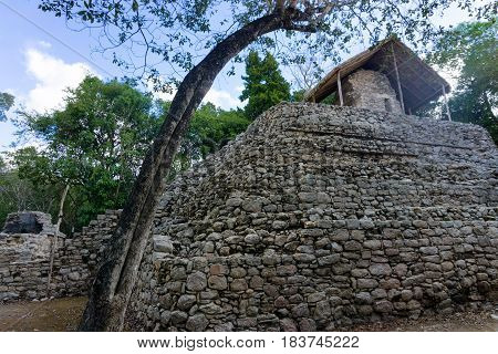 Ancient Mayan temple known as Temple of the Paintings in Coba Mexico