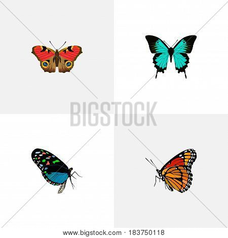Realistic Hairstreak, American Painted Lady, Milkweed And Other Vector Elements. Set Of Butterfly Realistic Symbols Also Includes Blue, Monarch, Hairstreak Objects.