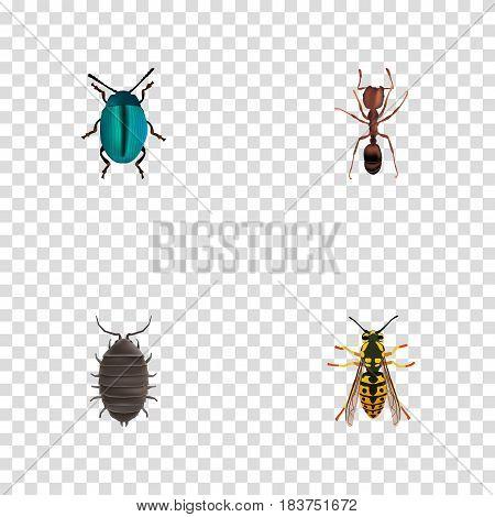 Realistic Dor, Bug, Emmet And Other Vector Elements. Set Of Animal Realistic Symbols Also Includes Emmet, Dor, Sting Objects.