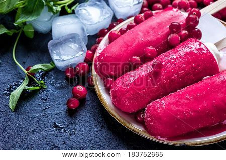 frozen cowberry and homemade fruit ice-cream on dark home table background